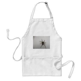 Thin legged wolf spider standard apron