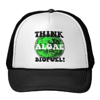 Think algae biofuel! cap