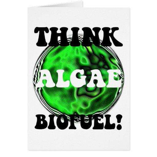 Think algae biofuel! card