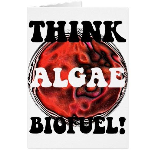 Think algae biofuel greeting card