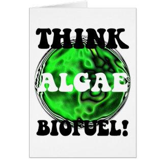 Think algae biofuel! greeting card