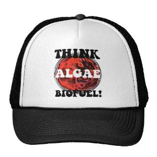 Think algae biofuel hats