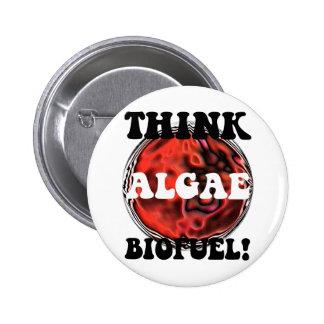 Think algae biofuel pins