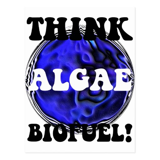 Think algae biofuel postcard