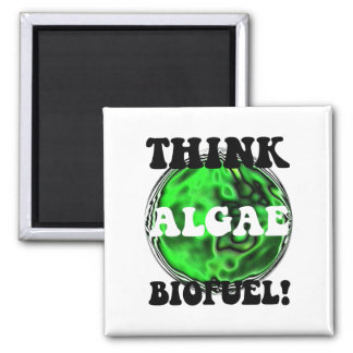 Think algae biofuel! square magnet