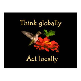 Think Globally Act Locally Hummingbird Postcard