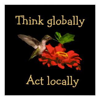 Think Globally Act Locally Hummingbird Poster