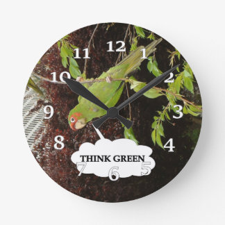 Think Green conure Clock