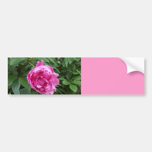 Think Pink Flower Bumper Sticker