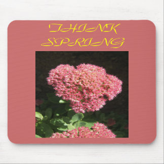 Think Spring  Mouse Pad
