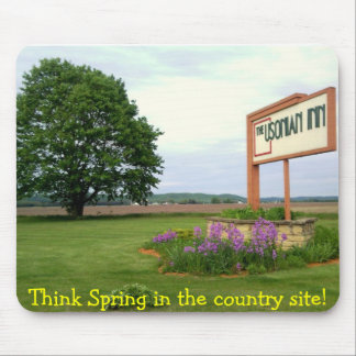 Think Spring - mouse pad