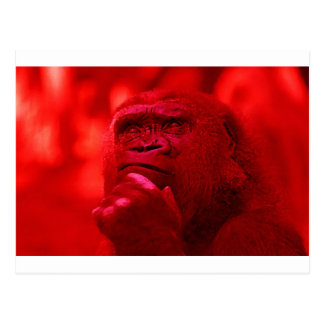 Thinking Gorilla Postcard