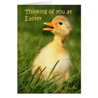 Thinking of you at easter card