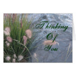 Thinking Of You beach photo Greeting Card