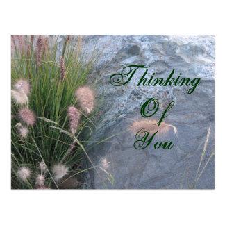 Thinking of You beach photo Postcard