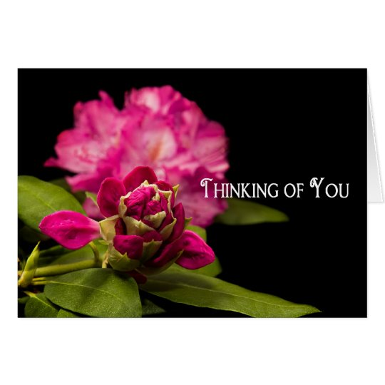 THINKING OF YOU - BLANK CARD - RODODENDRONS