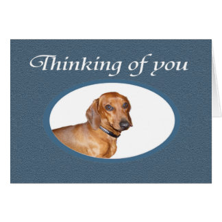 Thinking of You, Brown Dachshund portrait. Card
