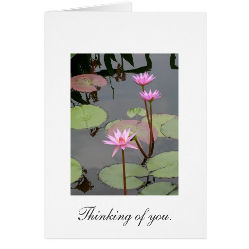Thinking of You. Greeting Cards
