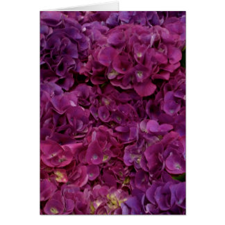 Thinking of you card with pink hydrangea flowers