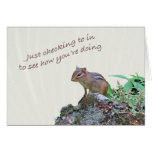 Thinking of You Chipmunk on Rock Greeting Card