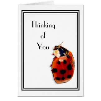Thinking of You Cute And Classy Little Ladybug Card