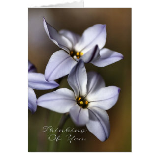 Thinking Of You - Flowers Card