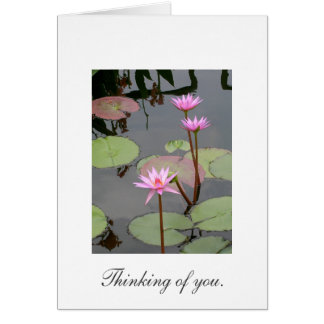Thinking of You. Greeting Card