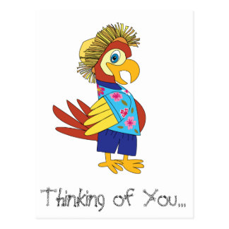 Thinking of You Island Parrot Postcard