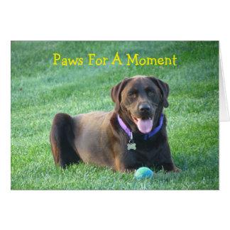 Thinking Of You Labrador Retriever Greeting Card