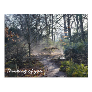 Thinking of You Misty Winter Garden Postcard