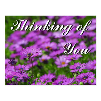 Thinking of You, Mom Postcard