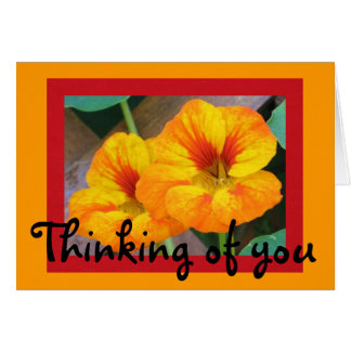 Thinking of you-Nasturtiums Card