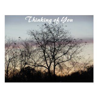 Thinking of You Pastel Skies Postcard