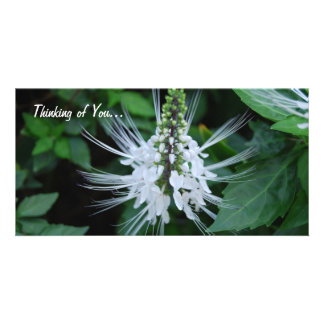 Thinking of you photo card template