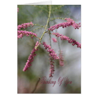 Thinking Of You - Pink Flowers Greeting Card
