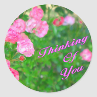 Thinking of You pink flowers Round Sticker