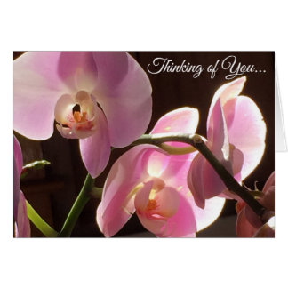Thinking of You Pink Orchid Blank Inside Card