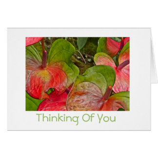 Thinking Of You/ Red and Green Anthuriums/blank in Card