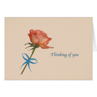 Thinking of you, Salmon Rose Card