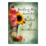 Thinking of You Secret Pal - sunshine Greeting Card