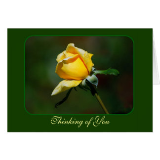 Thinking of You Yellow Rose Bud Greeting Card