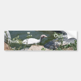 Thinking Outside the Box Bumper Sticker