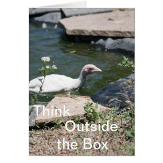 Thinking Outside the Box Greeting Cards