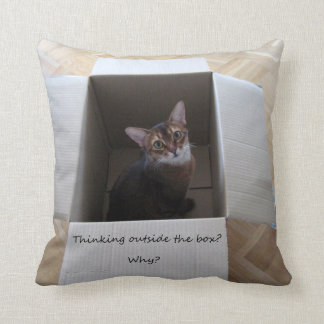 Thinking Outside the Box Pillow