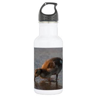 Thirsty Baby 532 Ml Water Bottle
