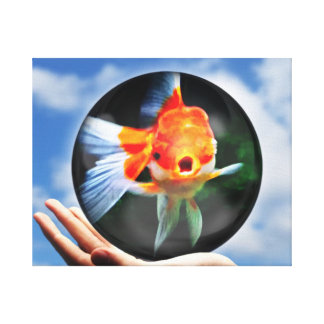 This cute Gold Fish Will Brighten Any Room Canvas Print