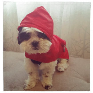 This dog hates rain napkin