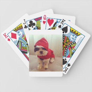 This dog hates rain poker deck