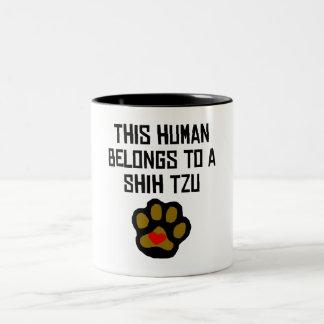 This Human Belongs To A Shih Tzu Mugs