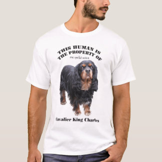 This human is the property of: black and tan cav T-Shirt